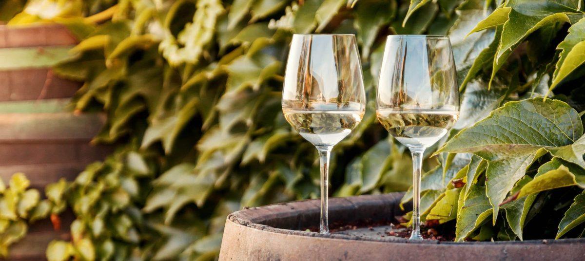 Deux verres de vin blancs sur un tonneau en bois